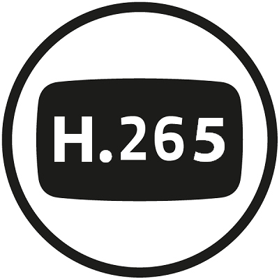 Space-saving H.265 codec